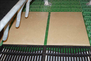 Polymer plate for sows